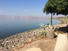 Sea of Galilee- Capernaum